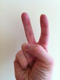 wiki-two-finger.JPG